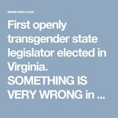 First openly transgender state legislator elected in Virginia. SOMETHING IS VERY WRONG in Virginia people don't change that quickly from a conservative state to this. SOMETHING IS VERY WRONG.