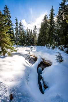 On the first day of spring, I had the chance to hit the snowshoe trails at Cypress Mountain. Despite some […] Vancouver Photography, Snowshoe, First Day Of Spring, British Columbia, More Photos, Trail, Canada, Weather, Tours