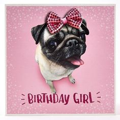 Pug glittered birthday girl card   Available at www.ilovepugs.co.uk  post worldwide