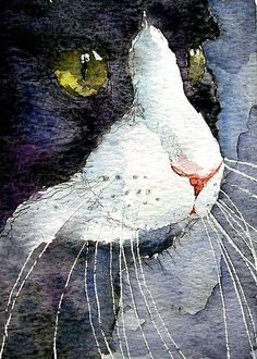 Cat Watercolor - LoveringArts