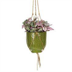 COYNES - Knit Hanging Pot, Small - Green