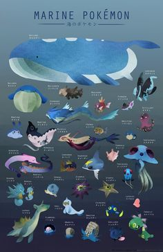 Marine Pokemon