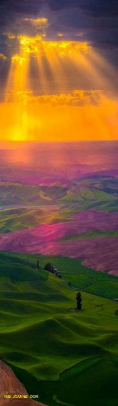 The beautiful Palouse of southeastern Washington • photo: Kevin McNeal on Wordpress