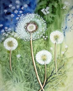 """Dandelion"" Painting by Maria Inhoven buy now as poster, art print and greeting card.."