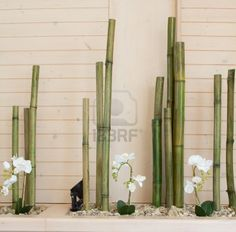 orchid flowers with bamboo decoration