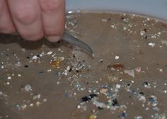 Wind pushes plastics deeper into oceans, driving trash estimates up (with video) | UW Today