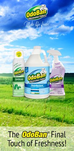 56 Best OdoBan Hacks and Tips images in 2019 | Cleaning