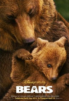 Disney Nature's Bears via www.Facebook.com/Disney