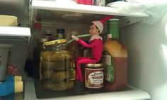 Elf on the Shelf sipping pickle juice....
