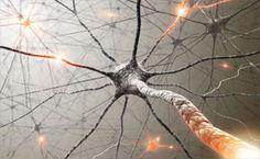 Finally, One Link Established- Chronic Fatigue Syndrome (CFS), Lupus, Fibromyalgia, Autoimmune disease and Chronic Lyme Disease