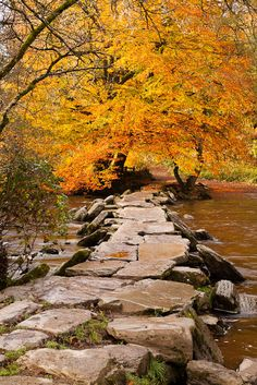 The Tarr Steps, a medieval clapper bridge dating back to 1000 BC, spanned the River Barle in the Exmoor National Park, Somerset, England, until Dec. 2012 when half the bridge was washed away by  heavy floods.  It has since been rebuilt.