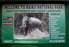 Uttarakhand posts: Rajaji National Park