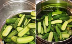 como branquear pepinos para pickles - homemade cucumber pickles step by step