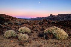 Ich liebe diesen einen Tag im Monat, wenn Sonnenuntergang und Mondaufgang zusammenfallen, wirklich sehr. Der Mond geht dann in den sanften Farben des Erdschatten auf und dies war vor rund vier Wochen (wirklich schon VIER Wochen???) besonders schön, als wir in den Cañadas del Teide auf Teneriffa waren. Der Sonnenuntergang war ein Traum in Rot…