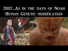 2017...As In The Days Of Noah_Human Genetic Modification - YouTube