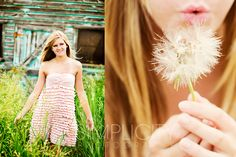 I like the dandelion idea