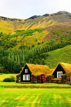 Rural Iceland!……..BET THOSE THACHED ROOFS HELP KEEP THE HOUSES WARM…………..ccp