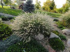 A west Metro botanic garden: Kendrick Lake | Denver Botanic Gardens