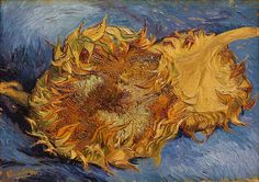Vincent van Gogh, Two Cut Sunflowers 17 x 24 inches, Oil on Canvas