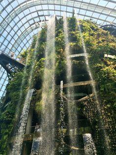 まるでラピュタ…シンガポールで行ってみたい、近未来な植物園 - ライブドアニュース