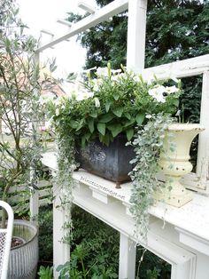 eine selbstgebaute Gartenlaube. Eingerichtet im Shabbychic.
