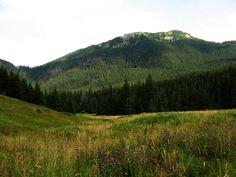 Odwiedzamy również doliny