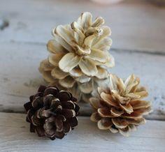 Toboz szőkítése: vintage dekoráció házilag | A napfény illata