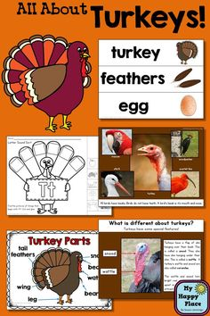 Turkeys: An Informational Unit for Primary Grades - PowerPoint Slideshow, printables, anchor charts, and more! $