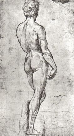 Cave to Canvas, thisblueboy: Raphael Sanzio (1483-1520), Study... Drawing Studies, Art Studies, Master Studies, Figure Studies, Raffaello, Figure Drawing Female, Figure Drawings, Art Drawings, Raphael Paintings