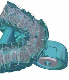 이빨 어느곳이든지 치실을 닿게 만들어 주는 3D 프린팅 된 치실거치제품