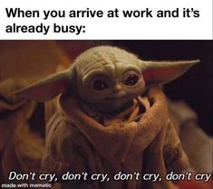 Yoda Funny, Yoda Meme, Star Trek Quotes, Inspirational Quotes With Images, Funny Memes, Hilarious, Star Wars Baby, Anime Nerd, Laugh At Yourself
