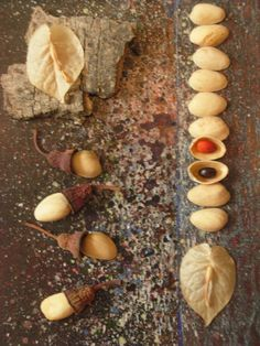 Found Natural Objects 3: by Vibeke A. Beckmann
