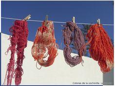 Lana teñida con el colorante natural de la cochinilla de Lanzarote.