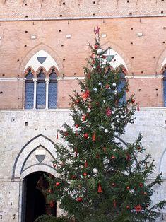 Piazza del Campo -Siena Buon Natale 🎋Dani