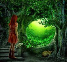 The Secret Forest.. by AledJonesStockNArt.deviantart.com on @DeviantArt