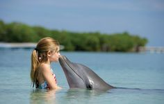 #myforeverdream is to kiss a dolphin...