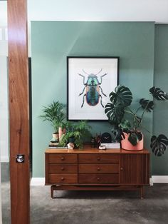 Dulux Australia Camouflage Green Photo and in home Styling by  Elements at Home Picture from Designer Boys Collections