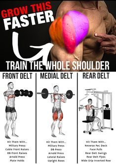 mens fitness - Add Serious Size To Your Shoulders With This Workout GymGuider com Ace Fitness, Planet Fitness Workout, Muscle Fitness, Mens Fitness, Weight Training Workouts, Gym Workout Tips, At Home Workouts, Training Exercises, Bodybuilder