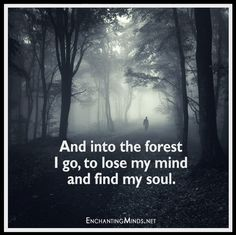 and-into-the-forest-i-go-to-lose-my-mind-and-find-my-soul - Lianne 2 PCT Great Quotes, Me Quotes, Inspirational Quotes, Nature Quotes, Motivational, Forest Tattoos, Lose My Mind, Soul Searching, Mind Body Soul
