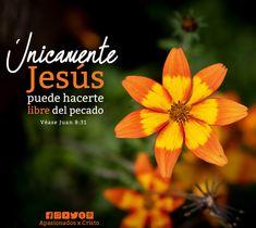 God Loves You, Gods Love, Bible Verses, Love You, Celestial, Daily Devotional, Saints, Christ, Christian Verses