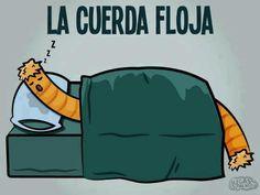 #Humor en español. Literalmente