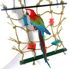 Parrot Bird Toys Bird Parrot Standing Rope Bird Cage Decoration Climbing Toy Hanging Rope Climbing Net Swing Ladder Play Gym Toy Perfect In Workmanship Home & Garden Bird Toys