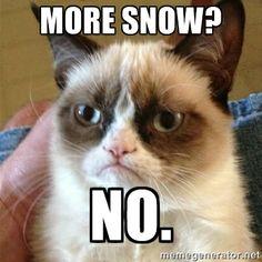 dear god no more snow | More snow? No. - Grumpy Cat | Meme Generator