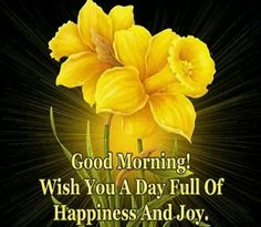 Good Morning...Have a joyful day!