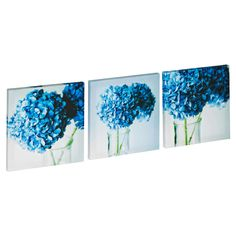Flowers In Glass Jar Print Set of 3 - Masters Home Improvement