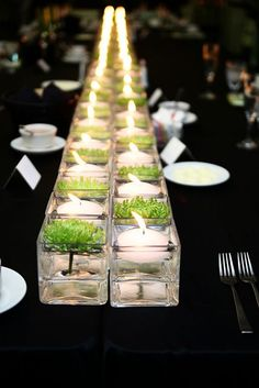 a runner of small square vases in the middle of the table with floating candles and floating green succulents.