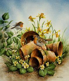 Illustrator David A. Discussion on LiveInternet - Russian Service Online diary Pretty Birds, Beautiful Birds, Illustrator, Bird Pictures, Country Art, Wildlife Art, Bird Prints, Bird Art, Amazing Art