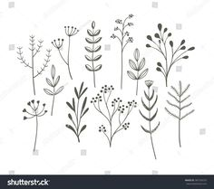 Cute vector collection of hand drawn meadow plants. royalty-free doodle grass set stock vector art & more images of flower Botanical Line Drawing, Floral Drawing, Botanical Drawings, Free Doodles, Floral Doodle, Illustration Blume, Flower Doodles, Flower Doodle Art, Doodle Drawings