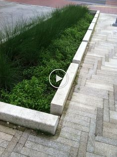 The openings in the curb and nice landscape make this stormwater management process a beautiful amenity. Located in Portland Urban Garden Design, Urban Design, Rain Garden, Water Garden, Cut Garden, Indoor Garden, Urban Landscape, Landscape Design, Nice Landscape