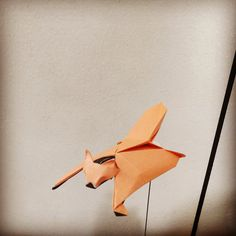 Origami Flying Squirrel By Yamada Katsuhisa Folded Gilad Aharoni
